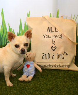 Tas- All You Need is Love and a Dog