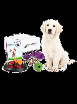 Puzzeldoos - Honden intelligentie speelgoed