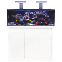 331 l - Aquariumsystem Aquarium - D-D Reef-Pro 1200