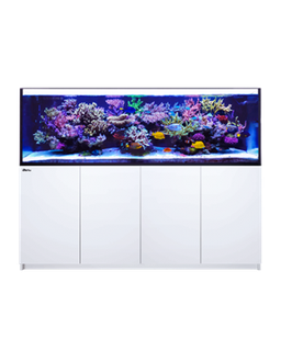 Red Sea REEFER 3XL - 900 (200x65x65cm)