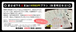 最安値でも超美謎!!4980円プラン(毎月200件 限定受注) 誕生日Ver.