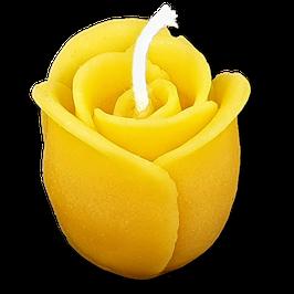 Rose, geschlossen