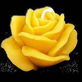 Rose, klein