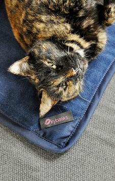 Katzen-Ruhedecke