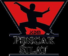 Silat Technik Training