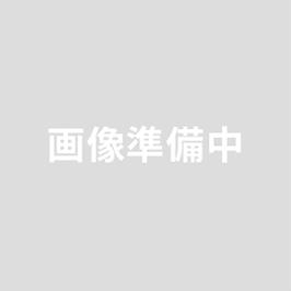 ジュエラー鑷子 直 # 5