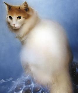 Kunstdruck - Cremefarbene Katze