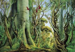 Kunstdruck - Wald der Aras
