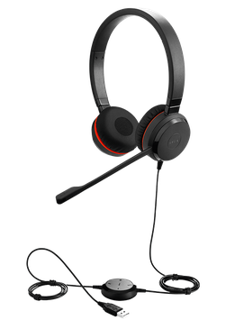 Jabra Evolve 30 DUO Headset