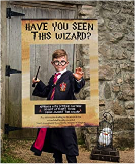 """Cadre/affiche """"Have you seen this wizard ?"""""""