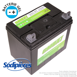 Batterie 12N24-4. Gel. Sans entretien