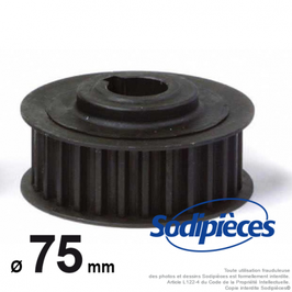 Galet tendeur 28 dents pour Castelgarden TC102 N° 25601560/0