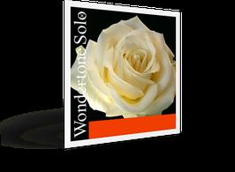 WONDERTONE SOLO  струны для скрипки PIRASTRO Art.N° 410021 - А (ЛЯ) струна -  из синтетики