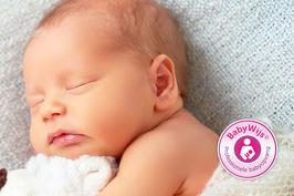 BabyWijs: professionele babyopvang