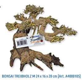 Holz Bonsai Treibholz (Größe M)