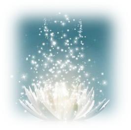 MEDITATION HERZLICHTPERLE zum Downloaden