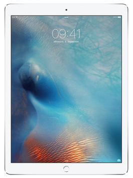 "iPad Pro 32GB Wifi de 12,9"""