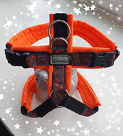 Geschirre + Halsbänder genäht / Halstücher
