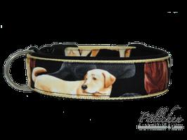 Pöllchen Komforthalsband Labrador