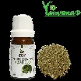Aceite Esencial de Tomillo / Thyme (Thymus Vulgaris) 100% Puro - Frasco x 10 ml
