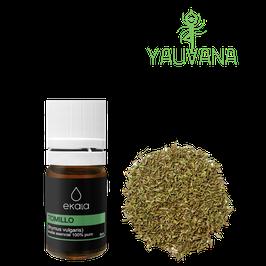 Aceite Esencial de Tomillo / Thyme (Thymus Vulgaris) 100% Puro - Frasco x 5 ml