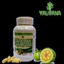 Garcinia Cambogia (Tamarindo Malabar), Estevia y Vitamina C - Frasco x 90 cápsulas x 500 mg