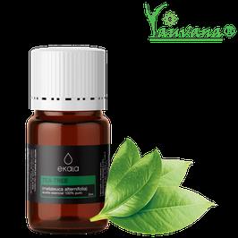 Aceite Esencial de Arbol de té / Tea tree Oil (Melaleuca alternifolia)  Orgánico - Frasco x 5 ml