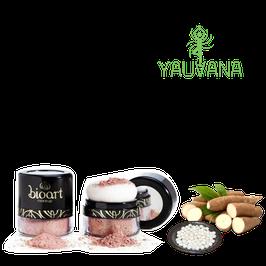 BLUSH BIONUTRITIVO NATURAL BIOART - ROSA