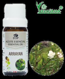 Aceite Esencial de Arrayan / Myrtle (Luma chequen) 100% Puro - Frasco x 10 ml