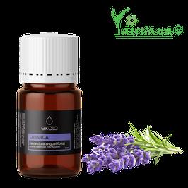 Aceite Esencial de Lavanda / Lavender (Lavandula angustifolia) 100% Puro - Frasco x 5 ml