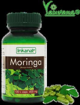Moringa Oleífera  - Frasco x 100 cápsulas