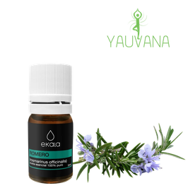 Aceite Esencial de Romero / Rosemary (Rosmarinus officinalis) Orgánico, 100% Puro - Frasco x 5 ml