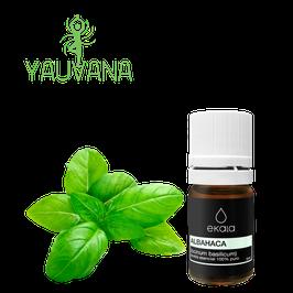 Aceite Esencial de Albahaca / Basil (Ocimum basilicum) 100% Puro - Frasco x 5 ml