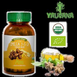 Omega 3, 6 &  9 Orgánico  Sacha Inchi (Plukenetia Volubilis) - Frasco x 100 cápsulas de gel