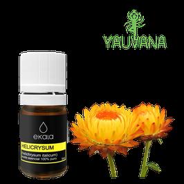 Aceite Esencial de Helicrysum / Helichrysum/  Inmortelle / Siempreviva (Helichrysum Angustifolium and Orientale) 100% Puro - Frasco x 2 ml