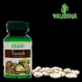 Tocosh 500 mg - Frasco x 100 cápsulas