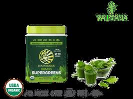 ORMUS SUPER GREENS MENTA (Super alimento Probiótico & Detox RAW) 90 Porciones - Frasco x 454 g