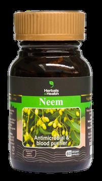 Neem (Azadirachta indica / Margosa / Nimbo de la India) - Frasco x 60 cápsulas