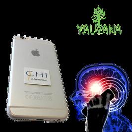 Chi e-Harmonizer (Chip Anti-radiación)