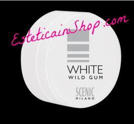 Scenic Wild Gum 90ml