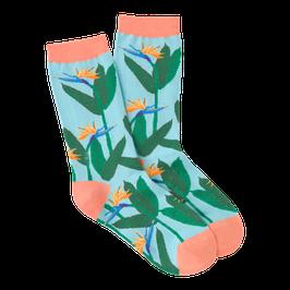 Women's Birds of Paradise Crew Socks