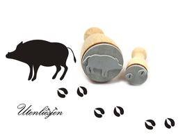 Wildschwein + Fußspuren - Stempelset