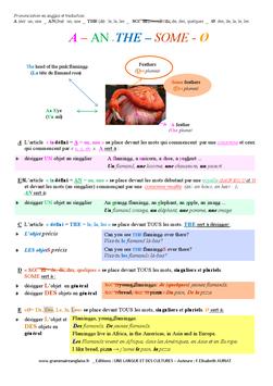 POSTERS EDUCATIFS AU CHOIX ANGLAIS et FRANÇAIS - Apprendre l'anglais en lisant!