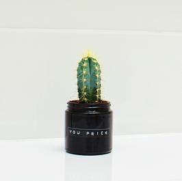 Jar Medium Cactus. YOU PRICK