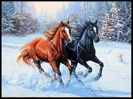 2 paarden - D18152