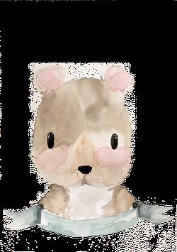 Brun der Bär