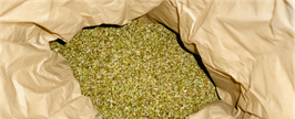 chillfoods alpen-oregano bio