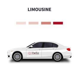 Scheibentönung Limousine
