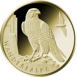 "20€-Goldmünze 2019 ""Wanderfalke"" - Serie ""Heimische Vögel"""