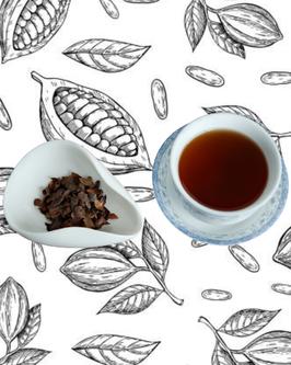 Thé de cacao